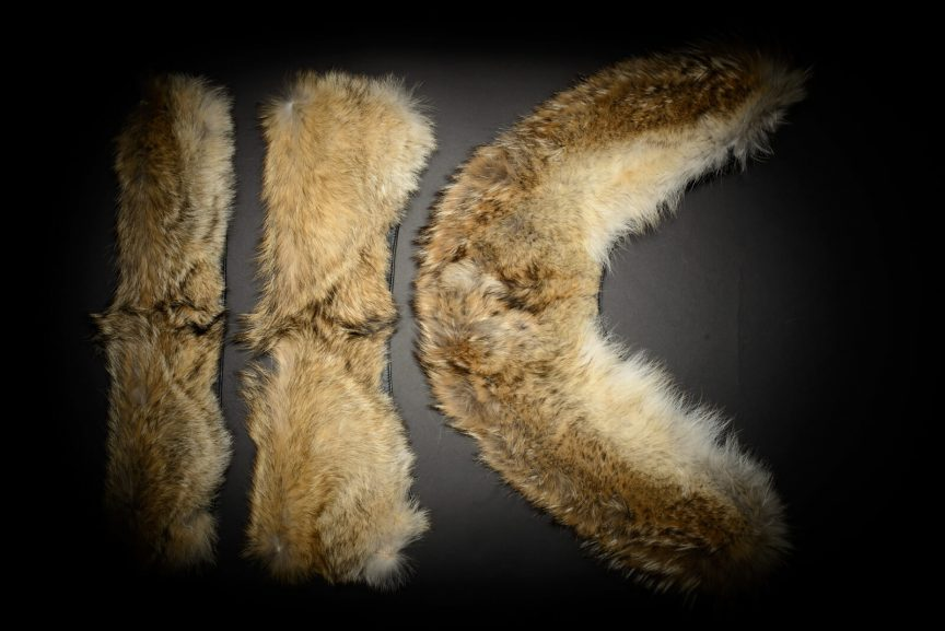 Coyote Fur Set